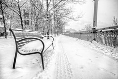 Bench in the snow B&W HDR (Dave DiCello) Tags: morning winter bw snow photography nikon pittsburgh blizzard hdr highdynamicrange incline threerivers burgh pittsburghskyline duquesneincline steelcity yinzer pittsburghbridges cityofbridges theburgh pittsburgher colorefex d700 ononesoftware nikond700 thecityofbridges pittsburghphotography pittsburghcityofbridges steelscapes perfecteffects picturesofpittsburgh cityofbridgesphotography