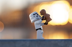 The troopers Teddy love (Kalexanderson) Tags: stilllife trooper love proud toys photography starwars holding child play lego teddy sweden stockholm bokeh father stormtrooper fatherandson emotions intheair ordinary lifting familylife ordinarylife realtions cclones