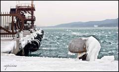 sotto zero (capsicina ) Tags: sea ice canon mare wind inverno castello bora trieste vento onde miramare ghiaccio onda bitta