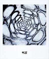 """#DailyPolaroid of 7-2-12 #131 • <a style=""""font-size:0.8em;"""" href=""""http://www.flickr.com/photos/47939785@N05/6840842357/"""" target=""""_blank"""">View on Flickr</a>"""