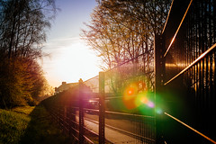 equinox. (angsthase.) Tags: sunset tree fence germany deutschland spring flare nrw ruhrgebiet baum dortmund 2014 ruhrpott mft tremonia micro43 epl5 olympuspenepl5 olympusm25mmf18