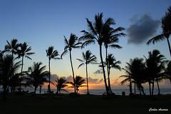 Nascer do dia (Carlos Amorim (Camorim10)) Tags: sol praia de mar grande barra amanhecer fora pennsulademara alvorecer taipu
