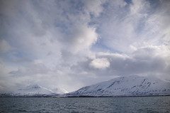 View from Hrsey (JimLeach89) Tags: travel holiday snow nature digital rural landscape outside outdoors countryside iceland nikon scenery exterior view natural dslr d40 nikond40 d40x d40d40x