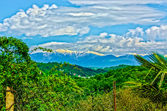 DSC_0056_HDR (sergeysemendyaev) Tags: mountains palms spring russia adler sochi greenandwhite 2016 snowpeaks        pravoslavnayastreet palmsandsnowpeaks