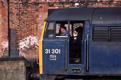 On the job (Bingley Hall) Tags: uk railroad blue england station train diesel britain transport engine rail railway brush transportation locomotive derby britishrail englishelectric 31301