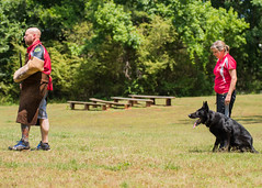 2016-05-22, IPO Training-37 (Falon167) Tags: dog shepherd josh rhonda german miles gsd germanshepherddog