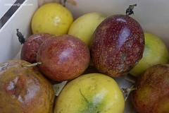 MaracujasDSC7422 (costapppr) Tags: passiflora cor maracuj fruto edulis