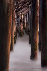 Whisper (Pragmatic1111) Tags: wood sunset beach water evening pier nikon surf peace solace d700 doubleniceshot mygearandme musictomyeyeslevel1