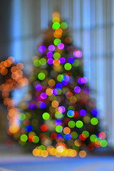 PETC Christmas Tree (zyans) Tags: tree colors december bokeh spirit petc engineeringday christmasdaychristmastree