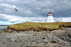 DGJ_5015B - Marache Point Lighthouse (archer10 (Dennis)) Tags: lighthouse canada birds island wooden nikon novascotia free capebreton dennis jarvis d300 iamcanadian islemadame 18200vr freepicture 70300mmvr dennisjarvis archer10 dennisgjarvis wbnawcnns marachepoint