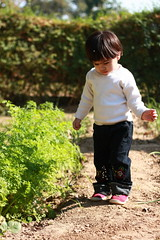 Baby steps into home garden (MR available) (Engineer J) Tags: trip pakistan portrait baby girl outside december play emotion junaid m niece single activity aliza lahore rashid 2011 mangla uet engr gettyimagespakistanq2 gettydec11 gettycurator