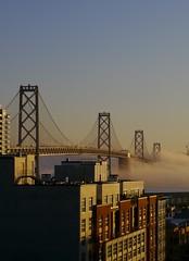 Bay Bridge in Morning Fog (Brandon C. Watson) Tags: sanfrancisco california morning bridge fog sunrise brannan baybridge autofocus wow1 kartpostal flickraward flickraward5 ringexcellence blinkagain dblringexcellence bestofblinkwinners eltringexcellence