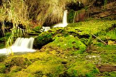 cascada (Emive) Tags: agua riachuelo cascada