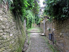 Stone street with steps, Piran, Slovenia (Paul McClure DC) Tags: architecture coast historic slovenia piran slovenija adriatic istria istra primorska pirano june2010