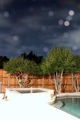 One summer night (jeffkim386) Tags: summer tree night canon eos star 18135 t2i