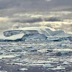 Ice and Snow (Christopher DiNottia) Tags: ocean voyage trip cruise light sea wild vacation sky cliff cold color art ice beach nature wet water birds animals rock trek canon outdoors coast boat fly frozen interesting intense sand marine scenery waves mood peace tour escape sink earth south tide hill sightseeing salt deep wave peak antarctica tourist spray glacier mount explore journey valley environment remote iceberg penquin aquatic wilderness quite powerful crevasse investigate frontier wander southpole amaze crag godly foriegn
