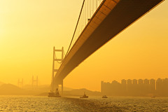 tsing ma bridge (leungchopan) Tags: fog day gettyimageshongkongmacauq1 gettyimageshongkongmacauq2 gettyimageshongkongmacauq3 gettyimageshongkongmacauq4