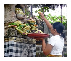 Offering , praying and blessing for a good day . (Franc Le Blanc .) Tags: bali lumix panasonic blessing offering hindu kuta agama canang wiman