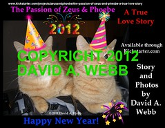 February 4th, 2012 is the deadline to order this book! (youtube.com/utahactor) Tags: pet cats love animal female print book ginger utah chats chat tabby 4th story phoebe zeus gato passion buy gata february fourth limited edition copy rare deadline flick own 2012 rewards youtube kickstarter