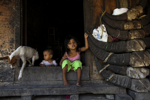 kids and dog-Sumba_201113455