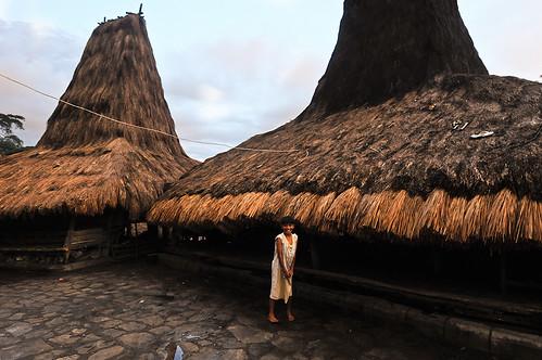 Sumbanese Village