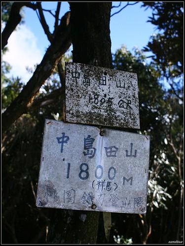 DSC04855