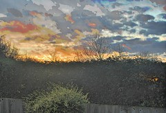 CamouflageSkySunsetGPPhdr (unclebobjim) Tags: camoflage hedge sunset greatphoto hdr clouds sky awardtree vividimagination greatphotopro
