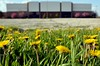 North Towne - Outside (rocketdog48) Tags: ohio decay toledo urbex northtowne
