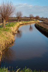 Polder landschap - Dutch polder landscape in winter (RuudMorijn) Tags: blue autumn trees winter sky panorama brown holland reflection tree green fall nature water netherlands dutch grass yellow clouds rural reflections season landscape golden countryside spring scenery colorful branch waterfront view ditch natural bright outdoor background bare country curves rustic scenic peaceful scene calm willow environment outline curved polder picturesque idyllic willows brabant tranquil autumnal banks outskirts 2012 landschap pollard sloot noordbrabant reflectie brabants wilgen platteland northbrabant spiegeling polderlandschap drimmelen knotwilgen characteristic bochtig mygearandme