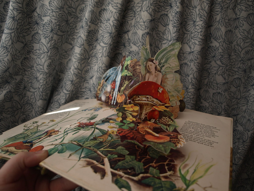 The World's Best Photos of brianfroud and froud - Flickr