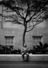 (Vitor S Photo) Tags: portrait people man tree art photography blackwhite pessoa arte retrato fotografia rvore homem pretobranco virgu vitors