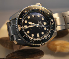Vuestro diver preferido. 6761492353_757cdbefb1_m