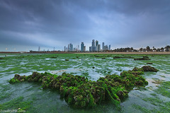 Greenish City (A.alFoudry) Tags: city longexposure blue winter light sunset sea seaweed building green tower rock clouds canon eos lights rocks long exposure cityscape slow gulf dusk mark tide low 9 arabic full filter arab 09 lee frame nd slowshutter shutter 5d lowtide kuwait fullframe ef kuwaitcity kuwaiti density q8 neutral abdullah mark2 1635mm الكويت كويت || f28l heavyclouds kuw q80 q8city xnuzha alfoudry الفودري abdullahalfoudry foudryphotocom mark|| 5d|| canoneos5d|| mk|| canoneos5dmark|| canonef1635mmf28l|| foudryphcom
