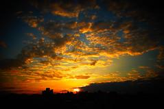 365 Project X GXR [035] (funkyruru) Tags: sunset sky 28mm 365 ricoh a12 天空 gxr ¤ñªå