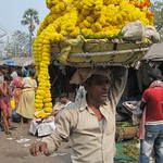 "Balancing Act at Howrah Flower Market <a style=""margin-left:10px; font-size:0.8em;"" href=""http://www.flickr.com/photos/14315427@N00/6829222321/"" target=""_blank"">@flickr</a>"
