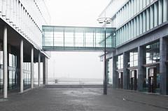 mosae forum maastricht (Tafelzwerk) Tags: holland glass fog architecture modern maastricht nikon nebel forum shoppingmall architektur minimalist glas niederlande einkaufszentrum 35mmf18 mosaeforum d7000 nikond7000 tafelzwerk tafelzwerkde