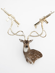 Untitled (Axis Deer) (White Walls and Shooting Gallery) Tags: pink blue urban sculpture woman white rabbit art reed yellow silver painting square skulls skeleton skull gold leaf whitewalls gun acrylic gallery dress mixedmedia contemporary coat butterflies goat taxidermy deer urbanart clear leopard guns sterling elk buck hybrid rectangle eland axis himalayan shootinggallery shotguns enamel petergronquist 12gauge contemporaryartgallery m16s tahr whitewallssf whitewallsgallery mp5s contemporaryartgallerysf contemporaryartgalleriessanfrancisco contemporaryartgalleriessf contemporaryartgallerysanfrancisco