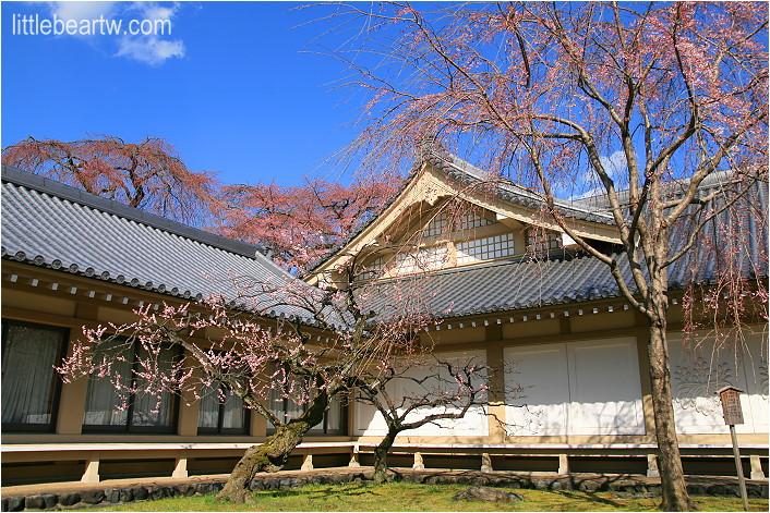 醍醐寺-50