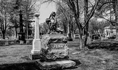Hally (Crunch53) Tags: bw cemeteries cemetery graveyard outdoors memorial scenery mt michigan detroit ground burying hdr elliott