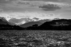 lake scene (alexhaeusler) Tags: landscape blackwhite view windy layers waterscape lakeofzug
