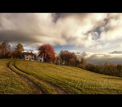 Remembrance (Marco Venturin Photography) Tags: autumn mountain tree nature clouds landscape nikon nuvole country natura albero autunno montagna paesaggio nevegal marven72 marcoventurin marcoventurincom masterclasselite