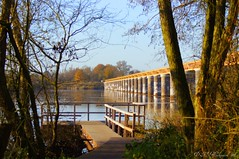 Ponton Moerputtenbrug Vlijmen (ditmaliepaard) Tags: trees bomen soe picnik ponton halve vlijmen zolenlijn demoerputten