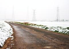 Country Road (Michaelasixfive) Tags: road winter mist snow grass fog frost view country pylon mundane
