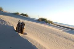 Cortadura (Iván Cano y Elena Conde) Tags: costa beach geotagged atardecer mar seaside spain sand nikon wind shoreline playa viento andalucia arena cadiz dunas cortadura d40 nikkor1855mm nikond40