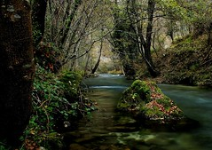 Fiume Nera (da.geli) Tags: autumn trees italy green water river stones umbria valnerina fiumenera mygearandme mygearandmepremium mygearandmebronze