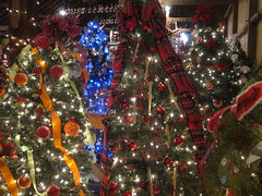 Amana Tannenbaum Forest 12-2-11 14 (anothertom) Tags: christmas barn holidays iowa christmaslights christmasdecoration christmastrees amana amanacoloniesiowa canonpowershots95 tannenbaumforest