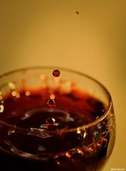 drop. (love_punx) Tags: nikon dof photos bokeh drop days 365 splash vinho taa d90 365days 365photos nikond90