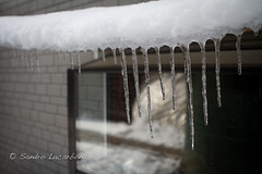 Melt & Freeze (Sandro_Lacarbona) Tags: voyage trip travel snow ice neige stalagtite backpacker japon sandro glace routard tourdumonde stalagtit tetedechatcom nakastsugawa lacarbona