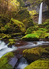 Elowcamotion (Aaron Reed Photography) Tags: motion green oregon photography waterfall moss details photographyclass photographers gravity stockphotos columbiarivergorge stockimages professionalphotography blackwhitephotography elowah photographyschool fineartphotographs skyphotographs lakephotographs aaronreed naturephotographs abstractphotographs landscapephotographs photographytraining framedartprints sunsetphotographs artphotographs sunrisephotographs aaronreedphotography surrealphotographs redphotographs waterphotographs cityscapephotographs cloudsphotographs duskphotographs reflectionphotographs exposurenorthwest bluephotographs aaronreedphotographer landscapephotographygallery mountainsphotographs orangephotographs pavementphotographs whatislandscapephotography whatisstockphotography aaronreedart aaronreedprints aaronreednature aaronreedaluminumartprints yellowphotographs bridgephotographs buildingsphotographs twilightphotographs roadphotographs aaronreedmetalprints aaronreedacrylicfacemountprints