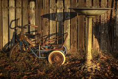 Old Stuff against a Fence (e.b. image) Tags: fence birdbath tricycle rusty hdr oldfence oldwagon oldtrike topazadjust sonyalphaa580 rosellerd